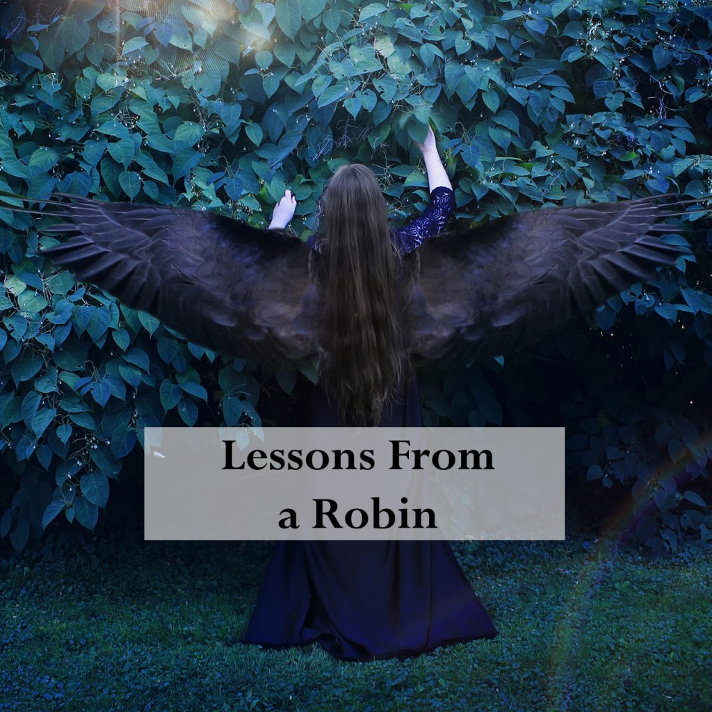 Lessons from a Robin